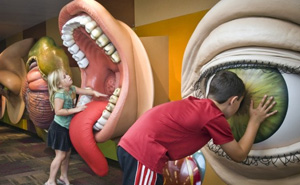 attraction-childrens-museum